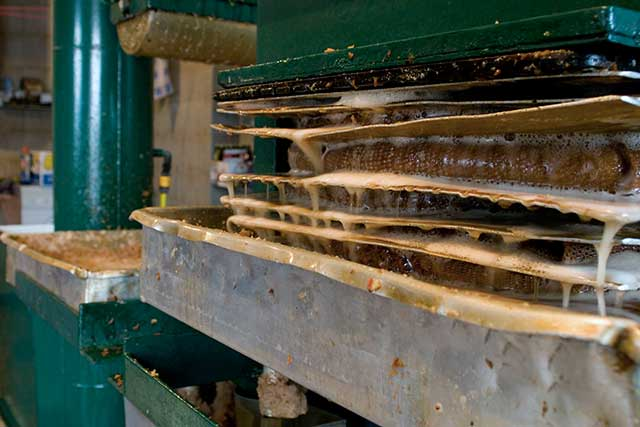 Old fashioned cast iron apple press