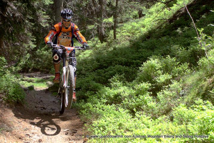 mountainbike singletrail potsdamutschland
